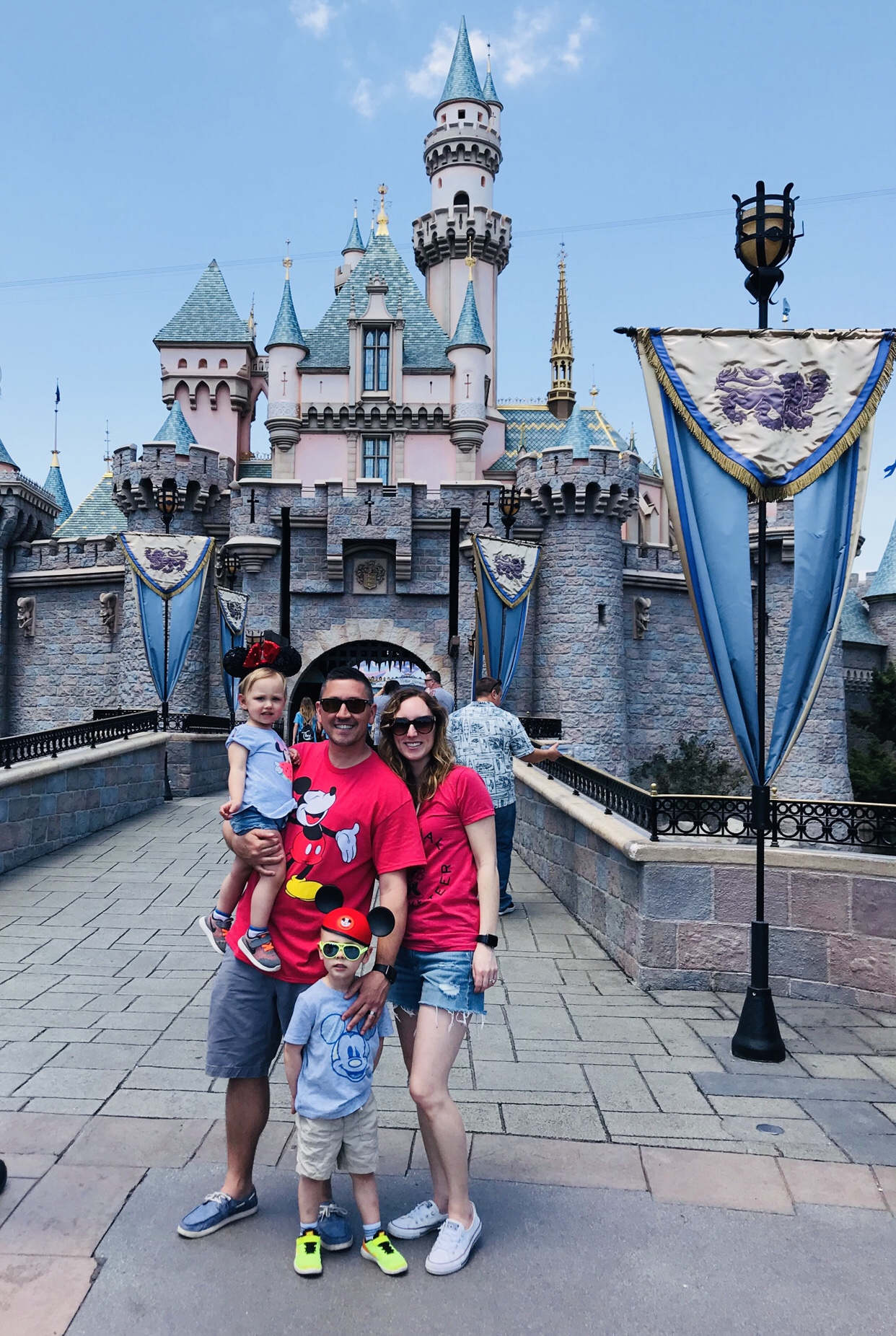Picture in front of the disney castle