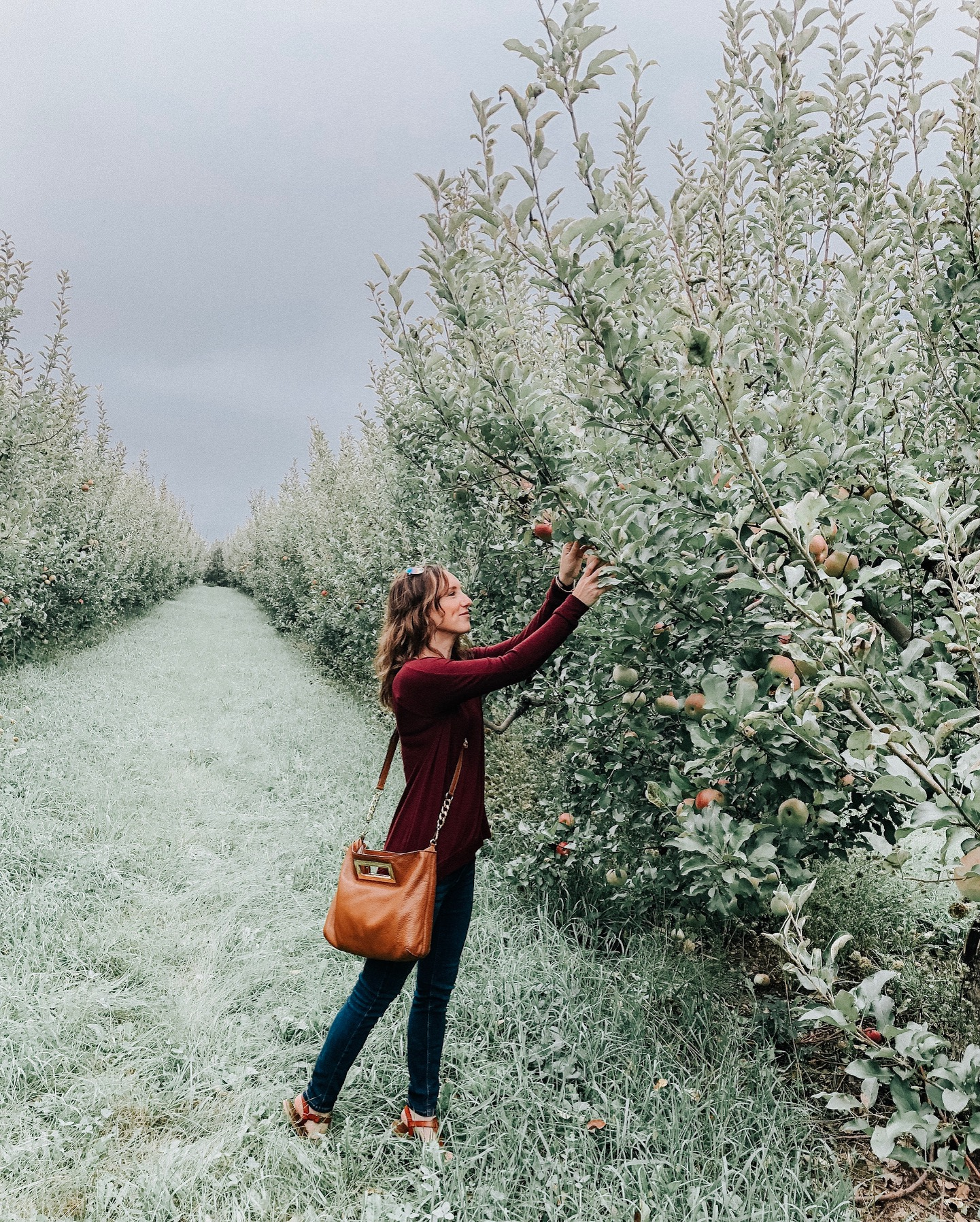 Fall Instagram Favorites | Daily Splendor Life and Style Blog | Apple Picking #casualstyle #appleorchard #momstyle #everydayfashion #fallstyle #fallneutrals