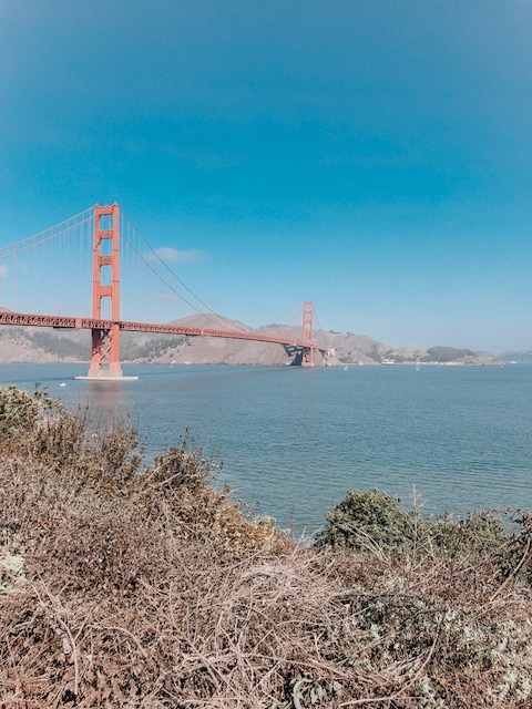 Daily Splendor | Things to do in San Francisco #sanfrancisco #california