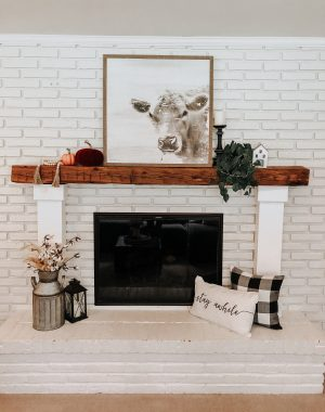 Fall Decor Home Tour | Daily Splendor Life and Style Blog | fall mantel decor #throwpillows #pumpkins #fallmantel #cozymantel