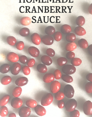 Homemade Cranberry Sauce | Daily Splendor Life and Style Blog #thanksgivingrecipes #christmasrecipes #cranberrysauce #cranberries #easyrecipe #holidayrecipe