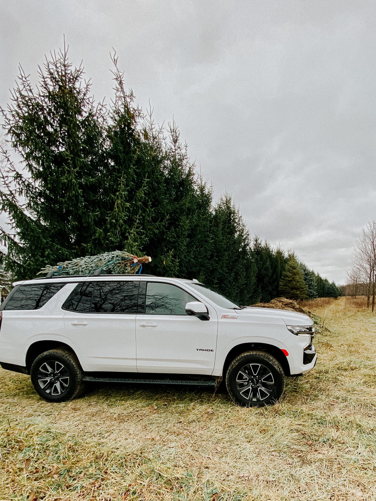Winter outings with the family | Daily Splendor Life and Style Blog #familychristmas #holidayfestivities #familyadventures #chevytahoe #2020activities #Christmastree #momlife